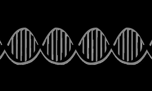 Op zoek naar het rijkdom-gen