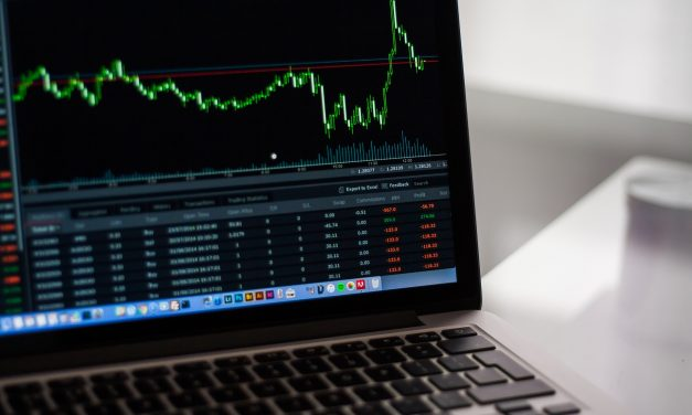 Wat voor type belegger ben jij?